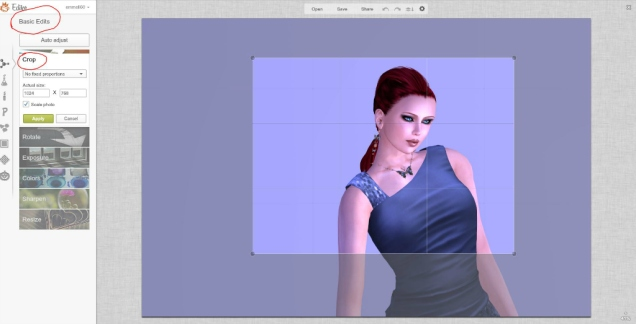 3. Basic Edit - Crop