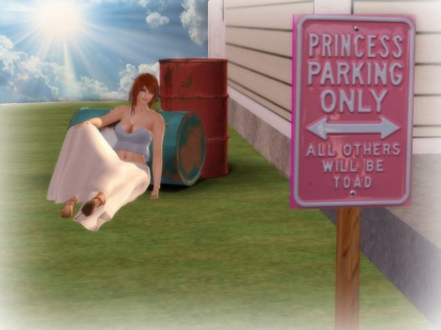 1 A Princess Sign