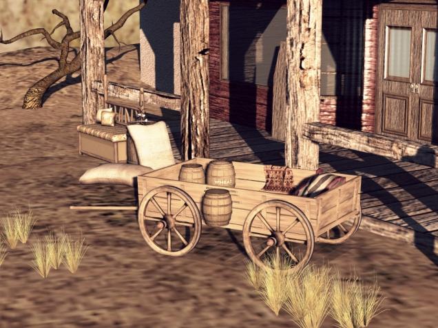 1 Wild Wild West_022