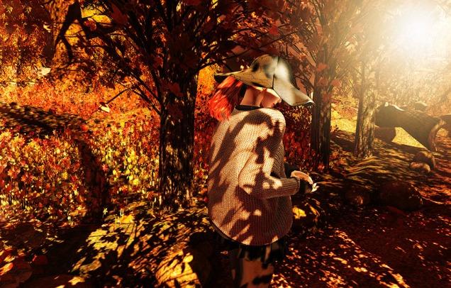 1 Autumn Burst
